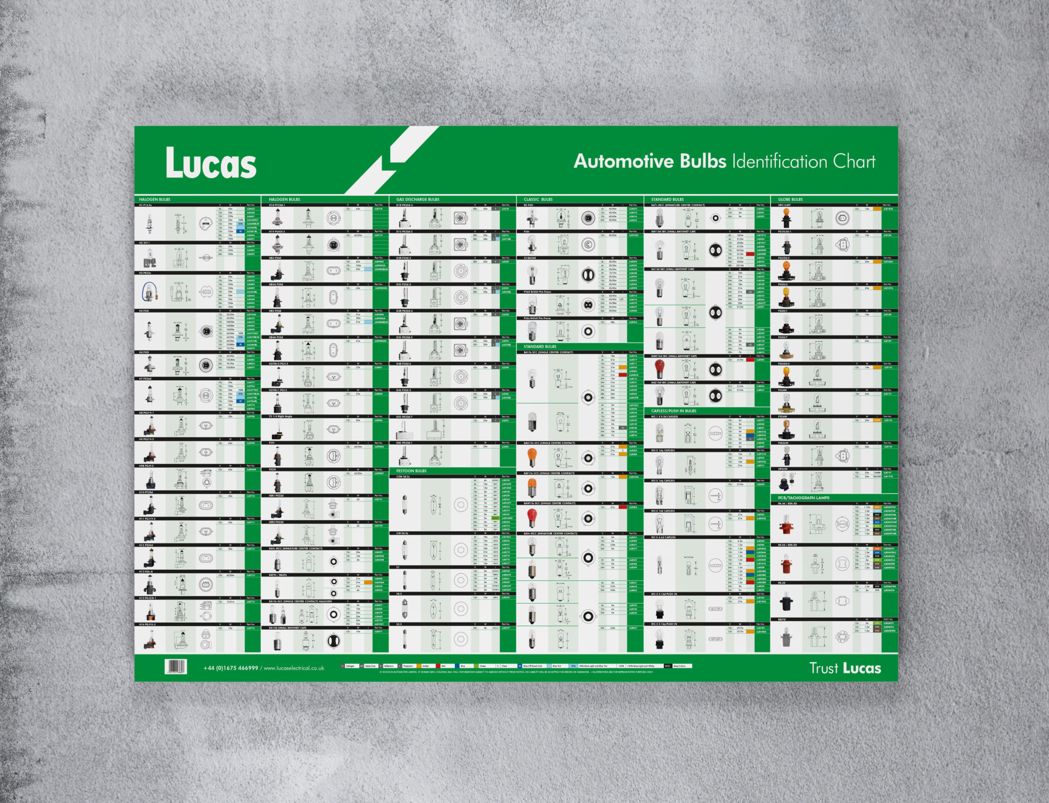 Lucas Bulb Wall Chart New And