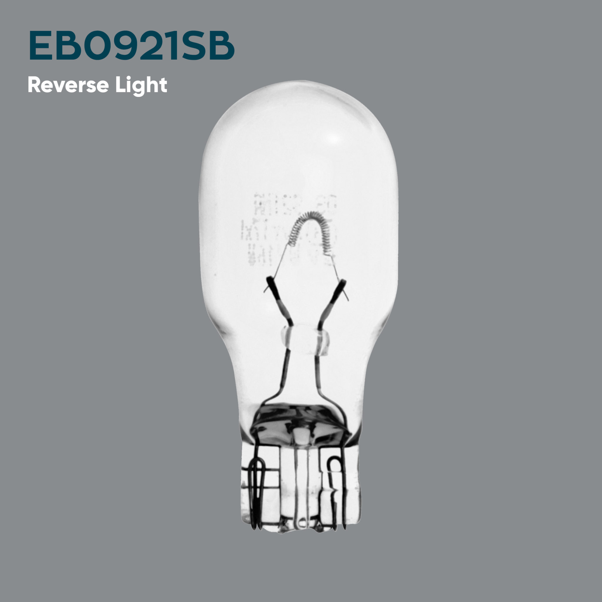 Ford Focus EcoBoost Reverse Light Bulb