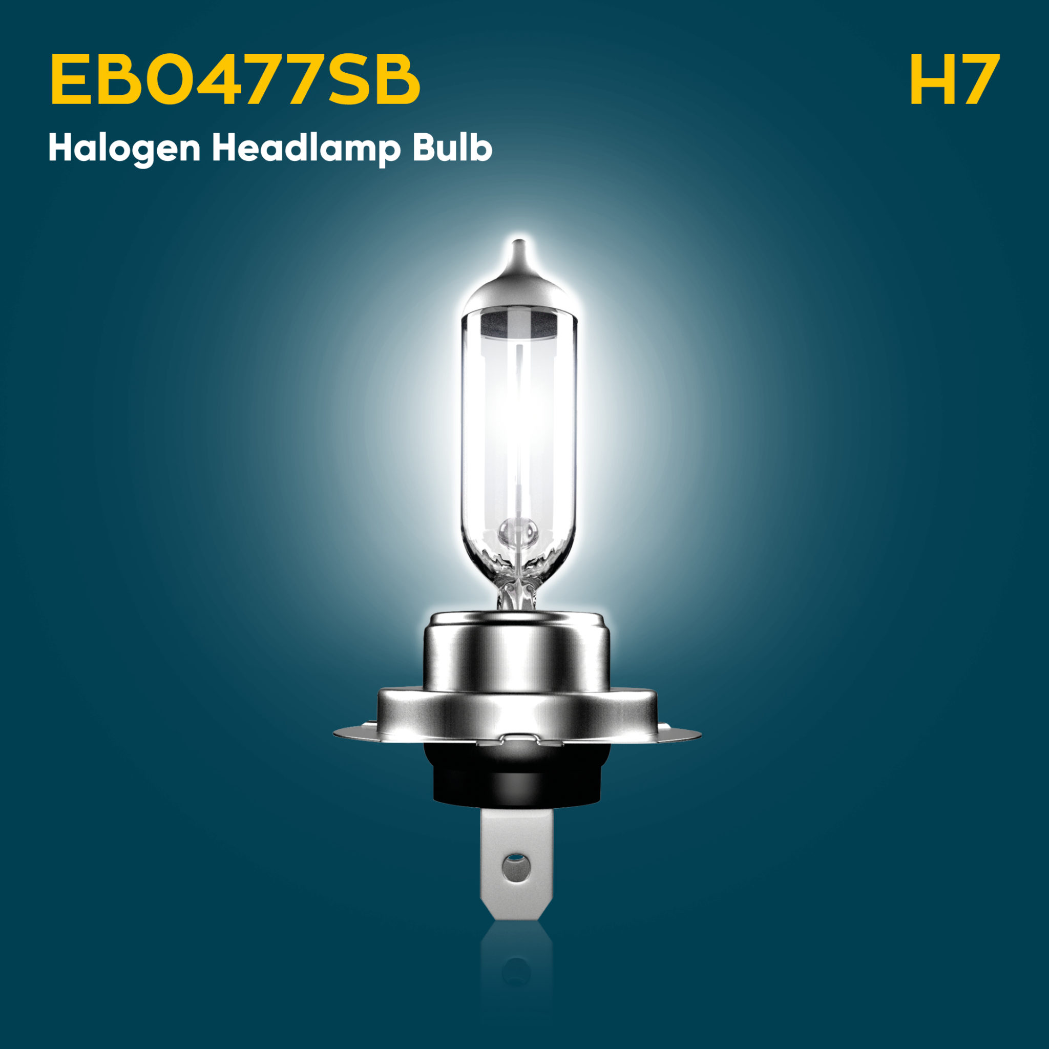 Ford Focus EcoBoost Halogen Headlamp Bulb