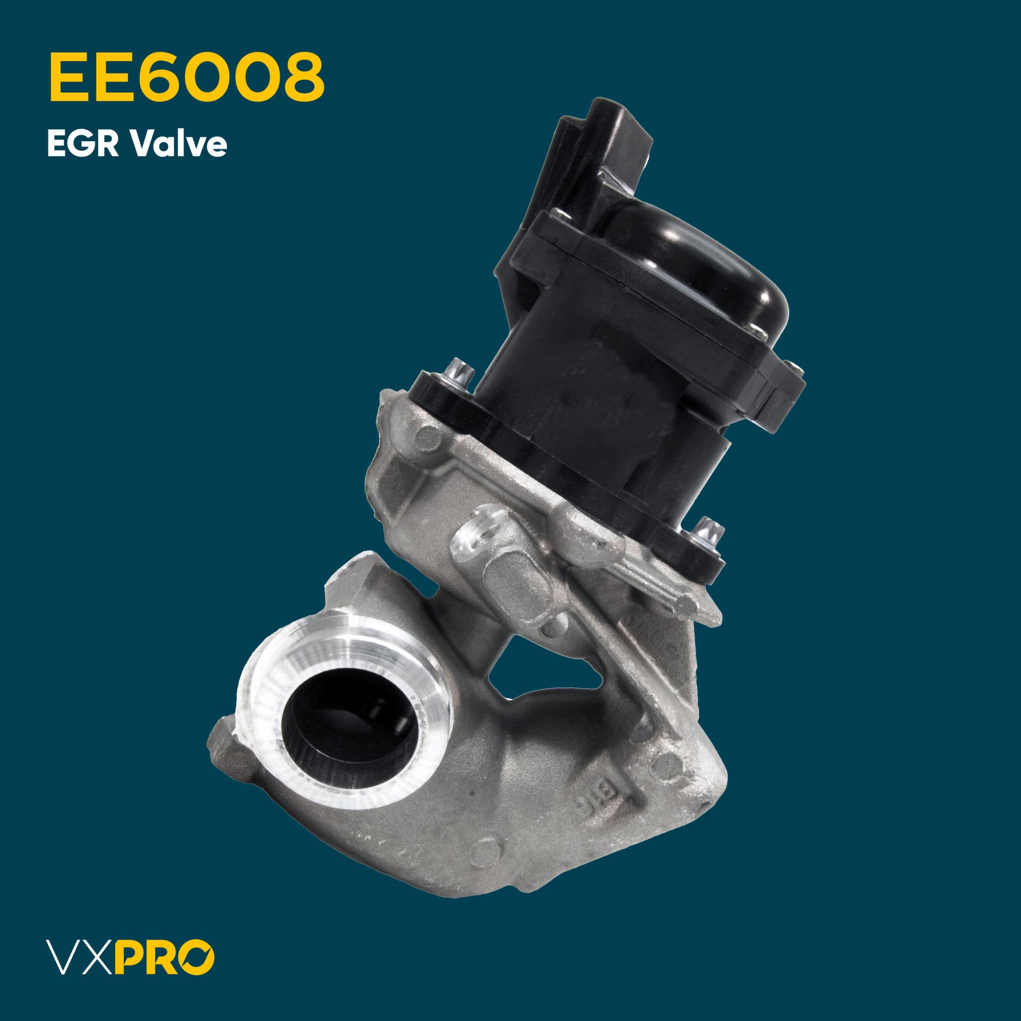 EE6008 EGR